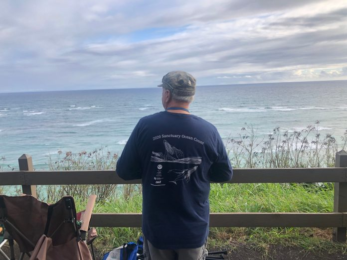 Whale population surveyed in second simultaneous statewide whale count
