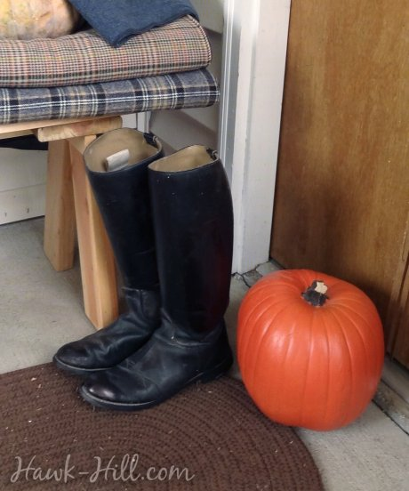 Old english riding boots in a fall display