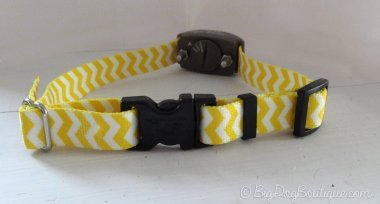 cute wireless fence dog collar