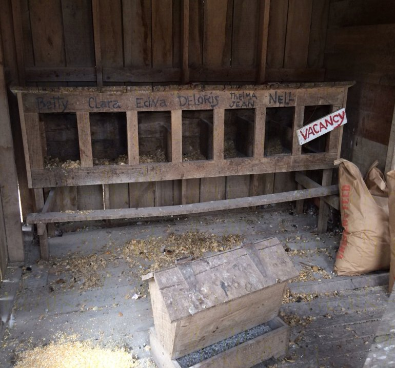 Nesting Boxes with Hen's Names