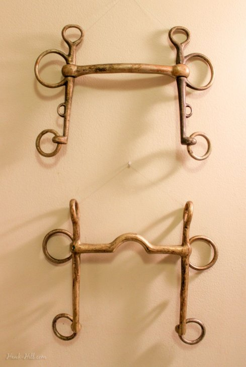 vintage pelham horse bits as equestrian wall decor
