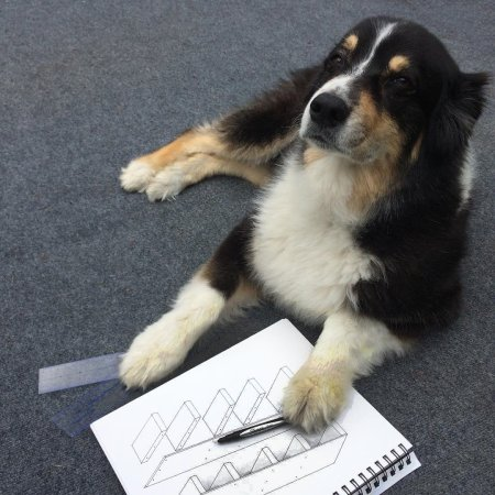 My Australian Shepherd architectural design consultant friend said the schematics work!