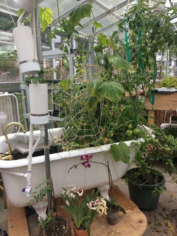 blog_hh_whimiscal_garden_15-9624