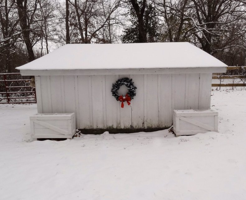chicken_coop_in_winter_snow