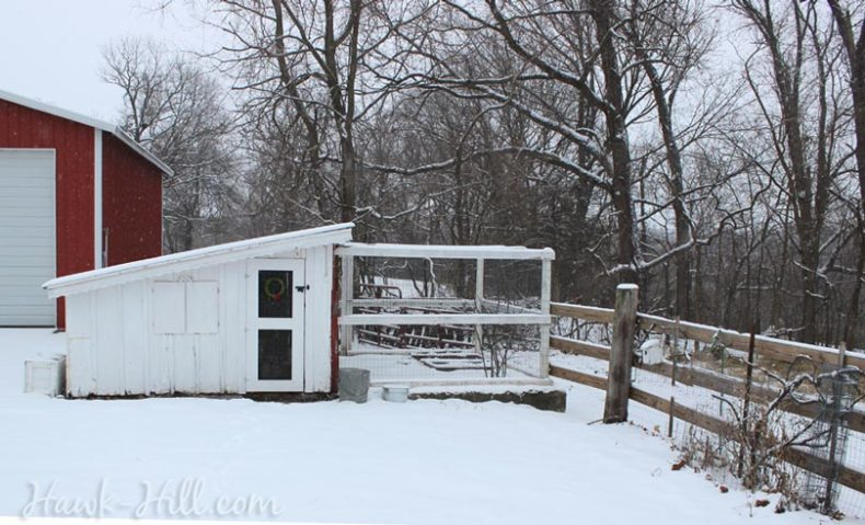 Chicken Coop Christmas Decorations