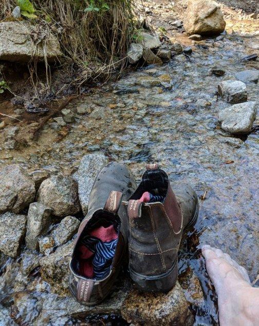 oddball adventure- gem hunting near seattle