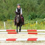 5 Safety Tips For Horseback Riding Kids Haynet