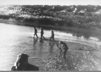 בריכות דגים בנאות הכיכר. שנות השישים