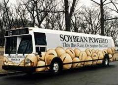 אוטובוסויה - אוטובוס שמונע על ידי ביודיזל המופק מסויה
