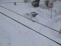 שלג משתק את ניו ג'רזי, 27 בדצמבר 2010. מתוך ויקיפדיה