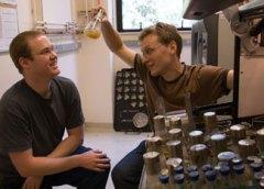 שניים מחוקרי ברקלי המפתחים אנרגיה חלופית מחיידקים