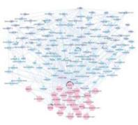 רשת התלויות של פיירפוקס מראה את הטבע המורכב של מערכות טכנולוגיות. מתוך עבודתם של אנדריי מאדלו וטין יאו פאנג.