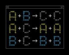 דוגמה לתכנות כימי - האותיות A, B ו-C מייצגות חומרים כימיים שונים. [באדיבותYan Liang, L2XY2.com]