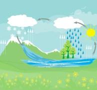 מחזור המים. איור: shutterstock
