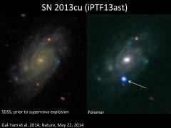 SN 2013cu