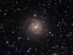הגלקסיה NGC 5548. צילום: טלסקופ החלל האבל