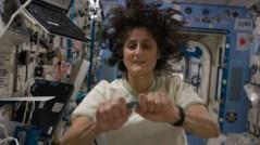 """האסטרונאוטית סוניטה וויליאמס מפעילה ניסוי ישראלי בתחנת החלל הבינ""""ל. צילום נאס""""א"""