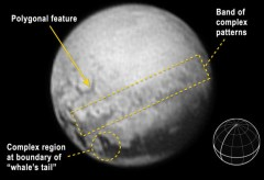 """רמזים מעניינים של הגיאולוגיה של פלוטו מתגלים בתמונה זו שצולמה על ידי החללית ניו הוריזונס ב-9 ביולי 2015 ממרחק של 5.4 מיליון קילומטרים מכאן. גרסה מוסברת זו של התמונה מראה תצורה כהה גדולה המכונה """"הלווייתן"""" הממוקמת על קו המשווה של פלוטו, בעלת רצועה צרה ומצולע משוכלל. בחלק התחתון של התמונה תצלום של פלוטו ובו מודגש השטח שכיסתה המצלמה כאשר קו המשווה וקו האורך הראשי מצויינים בסימון בולט. צילום: NASA-JHUAPL-SWRI"""
