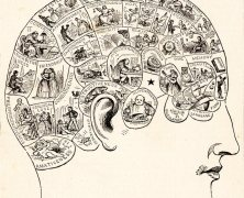 פסוודו מדע - היינו צריכים היום לדעת הרבה יותר. תרשים פרנולוגיה משנת 1883. במחצית הראשונה של המאה ה -19, פרנולוגיה היה מחקר פופולרי ונחשב מדעי. במחצית השנייה של המאה, התאוריה ננטשה במידה רבה. מתוך ויקיפדיה, נחלת הכלל