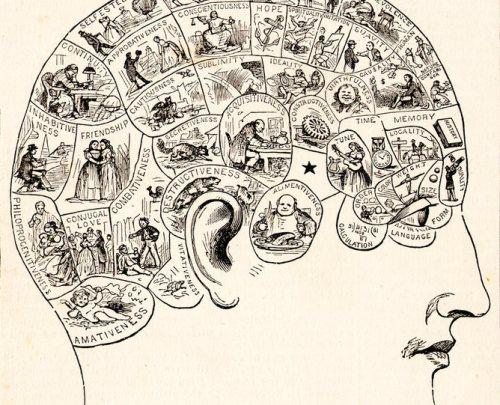 פסאודו-מדע - היינו צריכים היום לדעת הרבה יותר. תרשים פרנולוגיה משנת 1883. במחצית הראשונה של המאה ה -19, פרנולוגיה היה מחקר פופולרי ונחשב מדעי. במחצית השנייה של המאה, התאוריה ננטשה במידה רבה. מתוך ויקיפדיה, נחלת הכלל