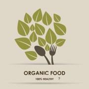 האם מזון אורגני גם בריא? קרוב לוודאי שלו. איור: shutterstock (התמונה עברה עיבוד נוסף)