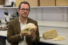 """ד""""ר ניק לונגריץ' ממרכז מילנר לחקר האבולוציה. צילום: אנתוני פרותרו, מאוניברסיטת באת '"""