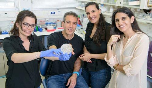 מימין: שירה וינגרטן-גבאי, שני אליאס-קירמה, פרופ' ערן סגל ודר רונית ניר. הנדסה גנטית