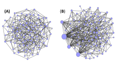 באיור: רשתות בעלות מבנה הומוגני (A) נבדלות מרשתות הטרוגניות (B) ביכולתן להסתגל לשינויים באמצעות אלתור. ברשתות מהסוג הראשון (הומוגניות), כל קודקוד משפיע על מספר מצומצם של קודקודים אחרים. כתוצאה מכך נוצרת דינמיקה כאוטית ותהליך החיפוש (אקספלורציה) אינו מתכנס למצב יציב. ברשתות ההטרוגניות, לעומת זאת, כמה מהקודקודים (מסומנים כעיגולים גדולים) משפיעים על חלקים גדולים של הרשת ויוצרים דינמיקה המובילה למצב יציב. באדיבות הטכניון.