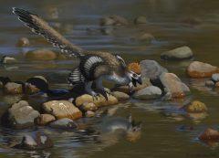 הדמייה של הדינוזאור המנוצה ז'ניואנלונג. איור: Emily Willoughby / Wikimedia.