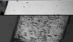 """פרובסקיטים האלידיים לפני (למעלה) ואחרי (למטה) צריבה. צריבה באמצעות אצטון חשפה את קיומם של יחידות מבניות הקרויות """"איזורים מקוטבים"""" (polar domains), אשר אופייניים לחומר פרואלקטרי. קנה מידה: 20 מיקרונים. מקור: מגזין מכון ויצמן."""