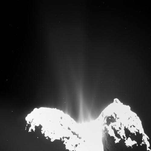 זרמי סילון שנצפו על ידי רוזטה בשביט P67. מקור: ESA/Rosetta/MPS/UPD/LAM/IAA/SSO/INTA/UPM/DASP/IDA.