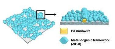ננו-חוטי פלאדיום המצופים בשלדה אורגנו-מתכתית מאפשרים זיהוי מדויק ומהיר של מולקולות מימן הנכלאות בינות לנקבוביות הנוצרות במערכת [באדיבות KAIST]