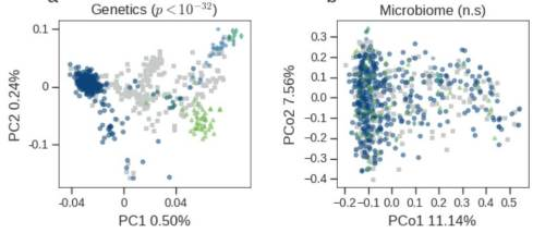חיידקים ללא מוצא. משמאל: הבדלים גנטיים ברורים בין נבדקים ממוצאים שונים. כל נקודה מייצגת נבדק, והצבעים מייצגים את המוצאים השונים (הציר האופקי והציר האנכי – צמצום המערך הגנטי המורכב של כל נבדק לשני ממדים). מימין: אי אפשר לזהות הבדלים באוכלוסיית החיידקים הנובעים ממוצא שונה של הנבדקים (הציר האופקי והציר האנכי – צמצום הפרמטרים השונים של המיקרוביום לשני ממדים). באדיבות מכון ויצמן.