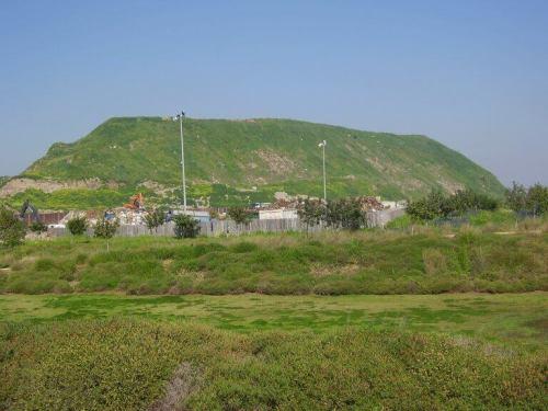 """חירייה. תצלום: ד""""ר אבישי טייכר, Wikimedia Commons."""