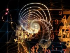 הקשר בין תבונה מלאכותית והמוח האנושי. איור: shutterstock