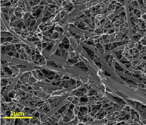 ננו-חומר מרוכב כפי שהוא נראה במיקרוסקופ אלקטרונים: ננו-צינוריות פחמן (חוטים דקים) המופרדות זו מזו מתלפפות סביב גבישים גליליים של צבע אורגני. צילום: בועז ריבצ'ינסקי, מכון ויצמן