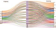 במבט על: מיפוי התקשורת הבין-תאית, המבוצעת על ידי ציטוקנים, בין תאי מערכת החיסון. איור: הטכניון