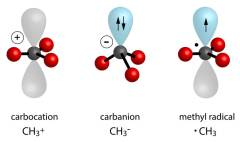 החומר 'קרבוקטיון' – מולקולה בעלת אטום פחמן הטעון במטען חיובי. איור: shutterstock