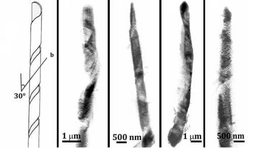 גבישי כולסטרול בצורת סליל. עיבוד דיגיטלי של נתונים שהתקבלו מארבעה גבישים שונים בתאים שונים באמצעות דימות קרני רנטגן רכות בתנאים קרים (cryo-SXT)