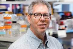 """פרופ' ג'פרי פרידמן מאוניברסיטת רוקלפלר, זוכה פרס וולף לרפואה לשנת 2019. צילום יח""""צ באדיבות קרן וולף"""