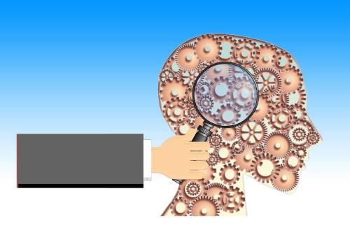 חקר המוח. איור מתוך PIXABAY.COM
