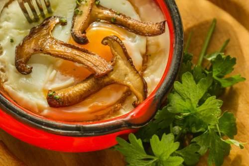 אוכל גורמה - חביתה עם פטריות שיטאקי וכוסברה. צילום: shutterstock