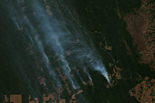 שריפות הענק ביערות הגשם באמזונס, אוגוסט 2019. צילום: shutterstock