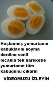 Kaşıkla haşlanmış yumurtanın kabuğunu tek hamlede çıkarma