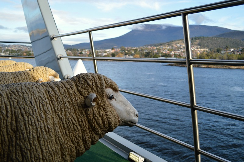Things to do in Hobart, Tasmania: MONA Ferry