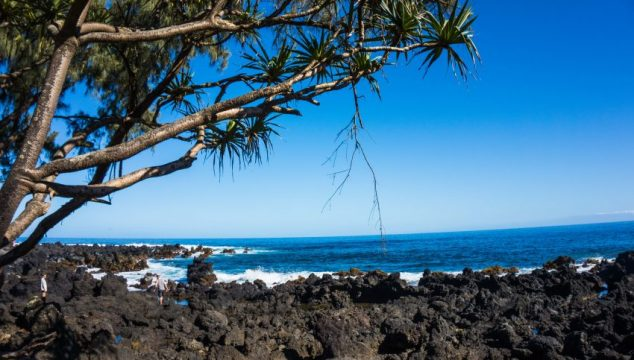 I Survived the Road to Hana, Thanks to Valley Isle Excursions