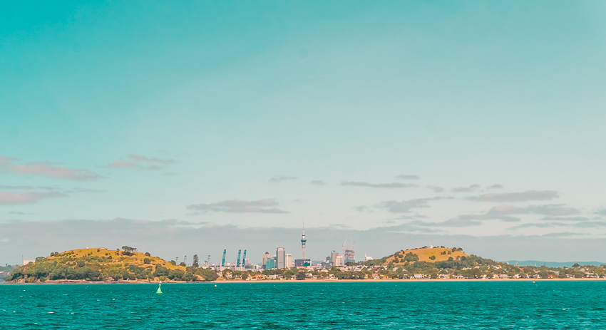 Cruise views in Auckland, New Zealand
