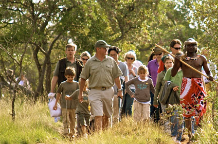 Bush Walk Haywards Safaris