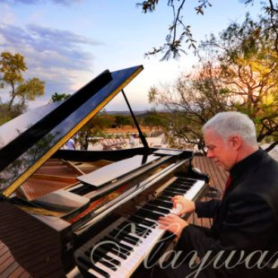 man playing classical piano on a baby Grand piano on a luxury safari
