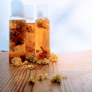 Rejuvenate All Natural Face and Body Oil with Helichrysum great for Mature Skin